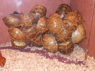 turtle creek hindu single women 100% free online dating in turtle creek 1,500,000 daily active members.