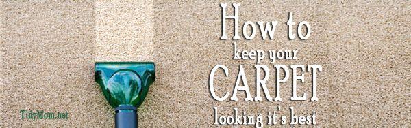 Gross Carpet Facts....beware!