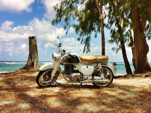 56 best images about honda motorcycles on pinterest for Honda north shore
