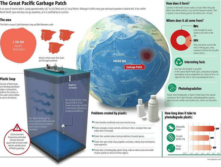 Great Pacific Garbage Patch Infographic uploaded in Eco-Infographics: