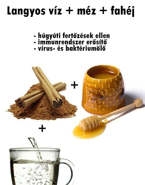 Természetes gyógymód: fahéj és méz baktériumölő, gyulladáscsökkentő tulajdonságaik miatt használják. A méz és fahéj rendszeres fogyasztása, valamint a rendszeres testmozgás segíthet a szívbetegségek megelőzésében, tisztíthatja az ereket. A langyos vízbe kevert méz és fahéj átmossa a húgyhólyagot, megszünteti a húgyúti fertőzéseket. Rendszeres fogyasztásával mérsékelhetjük az ízületi gyulladásokból eredő fájdalmat.