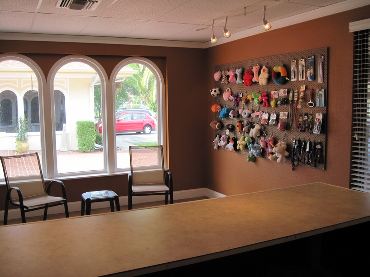 9 best dog grooming largo fl magics pet salon images on another picture of the lobby toys collars are available for purchase to treat your solutioingenieria Gallery