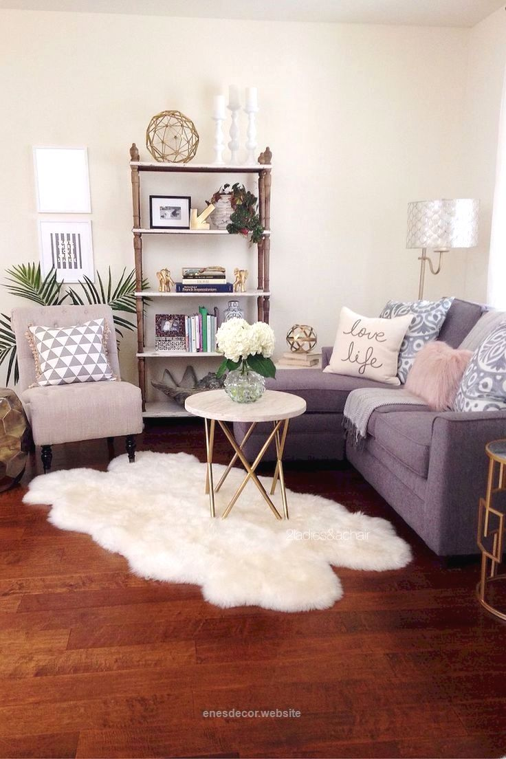 Best Living Room Decorating Ideas Designs First Apartment