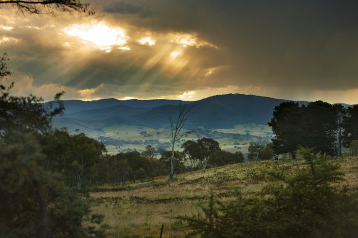 A late afternoon view to the Brindabellas, Strathnairn Arts