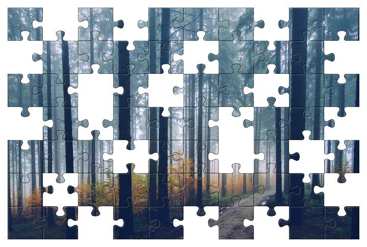 Free Jigsaw Puzzle Online - Forest