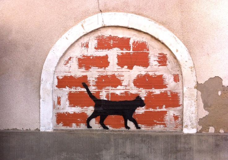 Le Chat #7... reconnait qu'il fait un bel effet sur ce mur de brique mais reconnait surtout que le maçon a travaillé vilain vilain