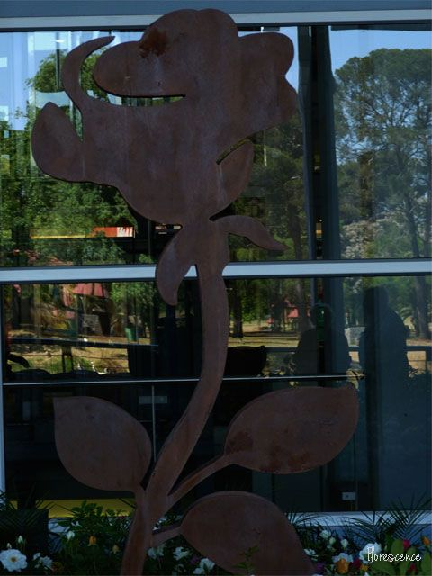 These cut out roses can be seen when you turn off from the N1 onto Nelson Mandela Drive Bloemfontein (Mangaung) Rose Festival 2013 (c) Florescence