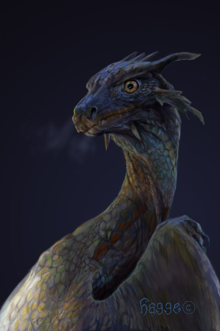 More like a Southern Dragon, as it has feather like spikes. The only problem would probably be its short snout. . .