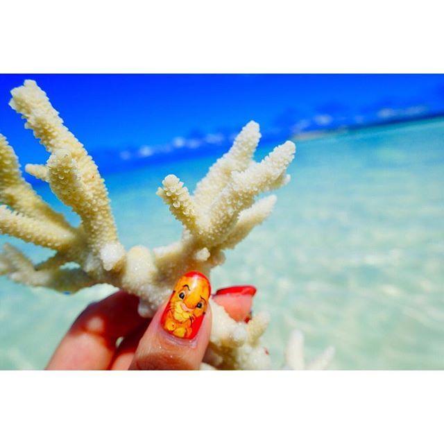 【kaoriiitravels】さんのInstagramをピンしています。 《海と青空とサンゴとシンバ💛 #沖縄***#波照間#happy #travel  #photo #photography #inmyworld #sea#beach#love #海外旅行 #写真#波照間島#波照間ブルー#海#旅行#珊瑚#art》