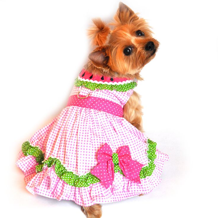 "Doggie Design ""Watermelon"" Pink Polka Dot Harness Party Dress in Pink multi"