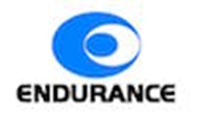 Endurance Technologies IPO First Day Subscription Figures - Apply IPO