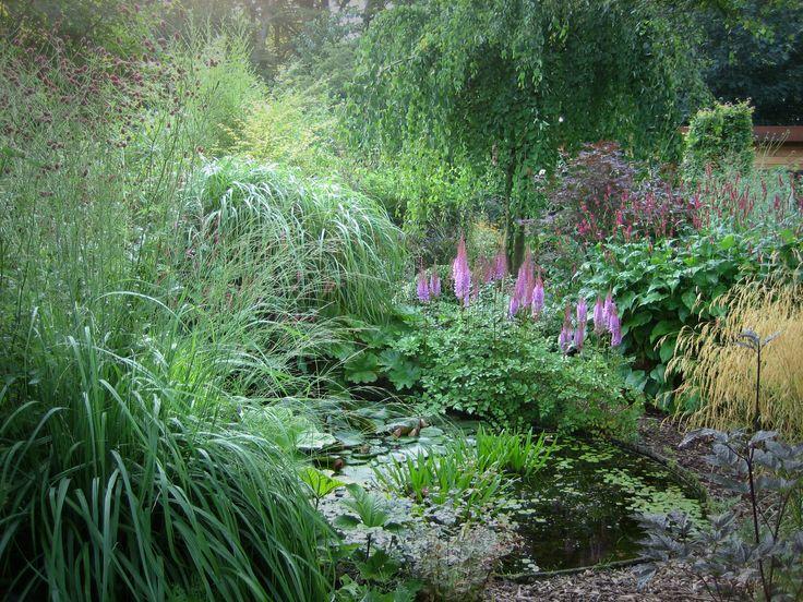 Rond de natuurlijke vijver is er een grote variatie aan planten, grassen en heesters te zien.