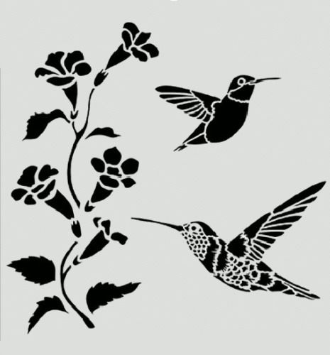 Hummingbird Stencil Hummingbirds Flowers Bird Birds