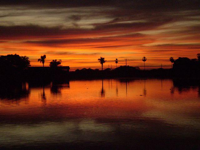 Pantanal - BRASIL. Galeria de fotos - Pousada Santa Clara Ltda.
