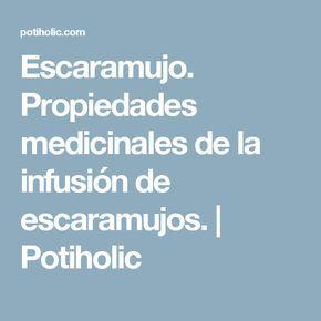 Escaramujo. Propiedades medicinales de la infusión de escaramujos. | Potiholic