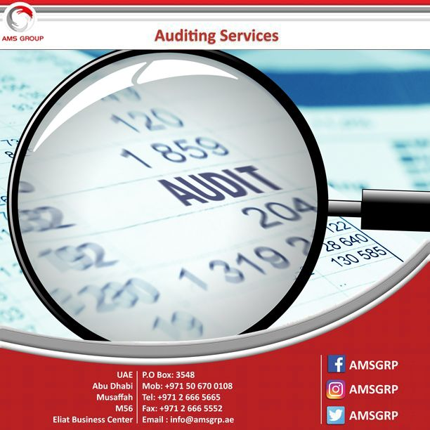 Financial Services Auditing Services Financial Analysis Accounting