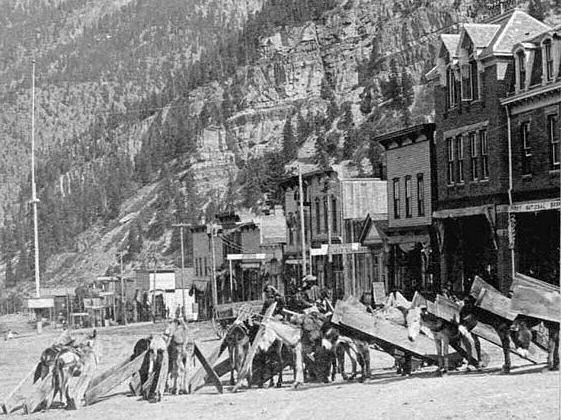 Loaded burros - Main St. Ouray, CO