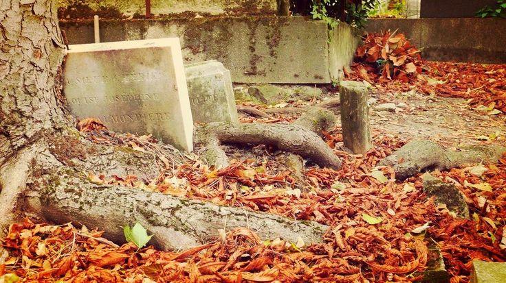 The Père Lachaise cemetery in autumn - Paris