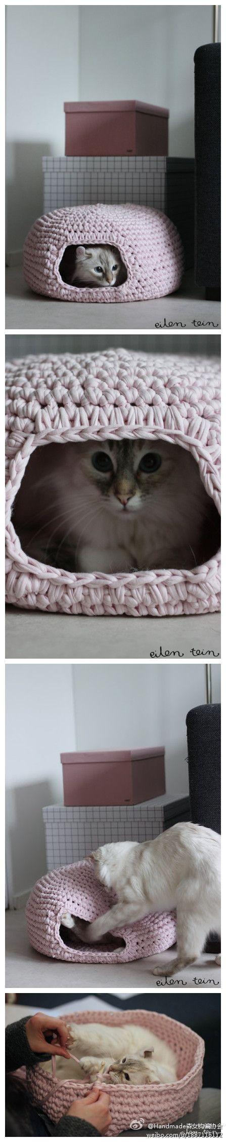 for the kitty cat :) I love this! @Virginia Kraljevic Kraljevic Wall
