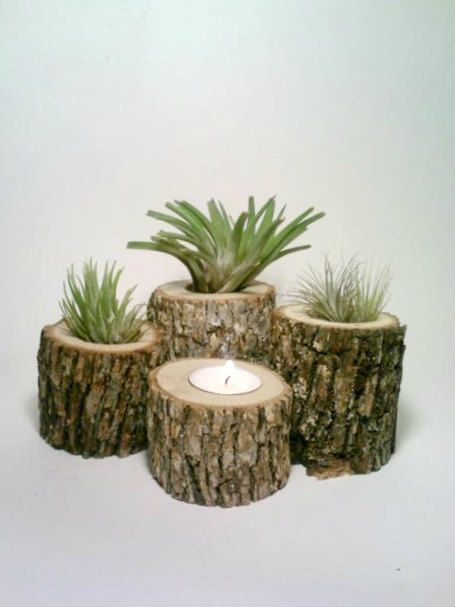 Air Plant Holder, Rustic Wedding Centerpiece, Log Candle Holders, FOUR, Oak Candle Holders. $35.00, via Etsy.