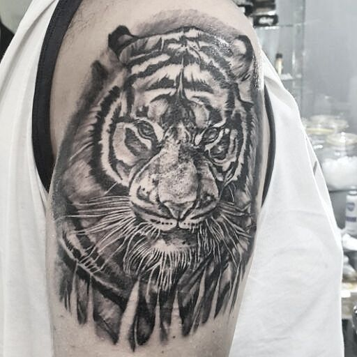 #tattooer #tattoocollection #tattoomagazine #supportgoodtattooing #tattooartwork #tattrx #tattooaddicts #topclasstattooing #superbtattoos #tatuaggio #bodyart #darkart #realism #tigertattoo #inkedlife #inkedsociety #inkedaddict #tattedup #tattoonation #inkd #creative #realistictattoo #inkedmodel #tattoomodel #inkedgirls #tattooedgirls #girlswithink #girlswithtattoos #snakebite #tattoolifemagazine