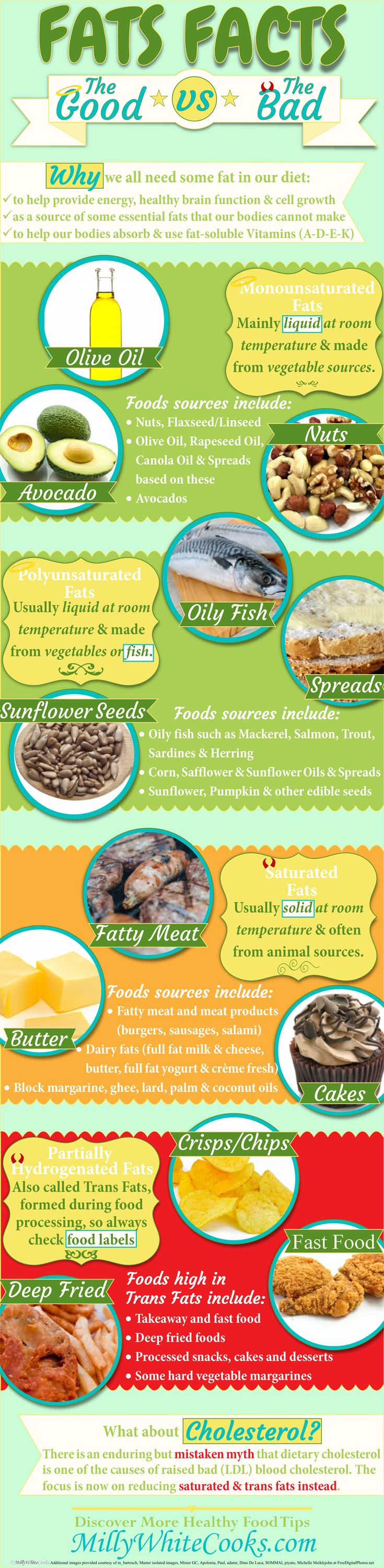 Discover the Facts About Fats: Good vs Bad & Why We All Need Fat in our Diet (Infographic). Read more http://www.millywhitecooks.com/2015/09/the-facts-about-fats-good-unsaturated-vs-bad-saturated-trans.html