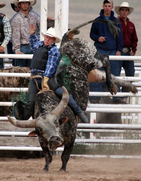 Bull Riding | Bull Riding. Photo by Clint Gilchrist, Pinedale Online.