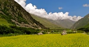 Chitkul, Himachal Pradesh, India: The last inhabited village on the Indo-Tibet border in Kinnaur valley is Chitkul, lying on the crest of Baspa River. It is known for huge growth of potatoes and peas of excellent quality.   Read 10 Lesser Known Vacation Spots in Himachal Pradesh: http://www.flarebuzz.com/2016/04/10-lesser-known-vacation-spots-in-himachal-pradesh/