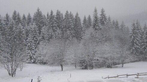 Zima na slovenských kopaniciach ❄ ❄ ❄