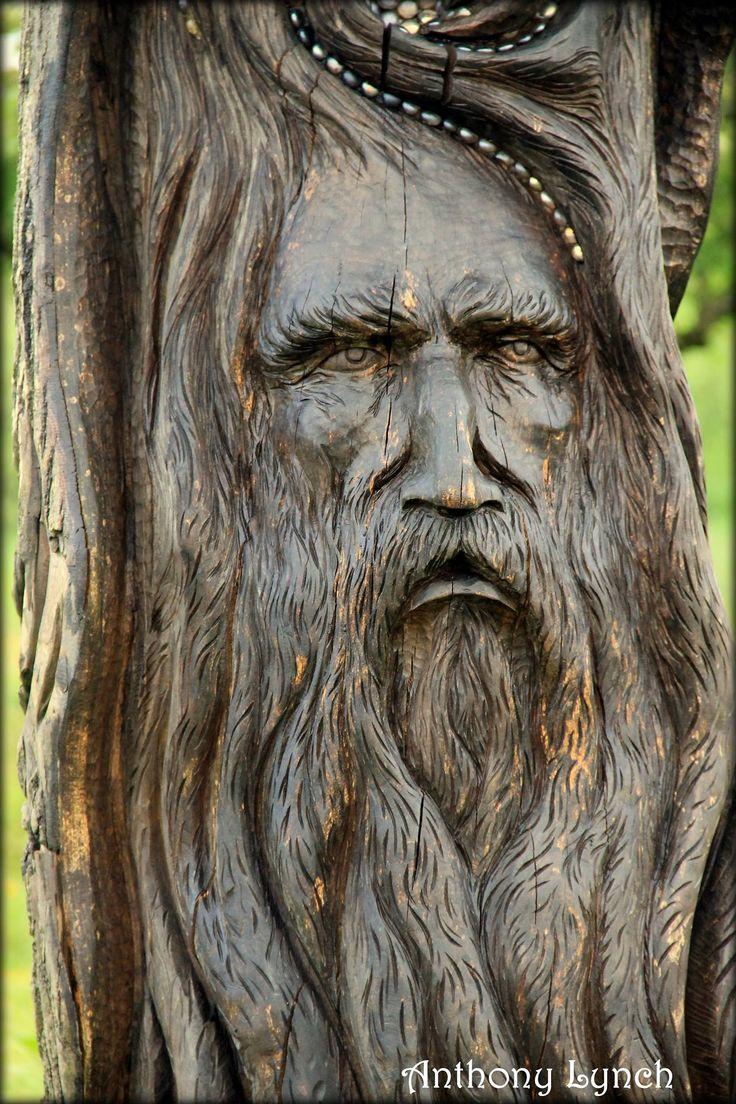 Les meilleures images du tableau carvings sur