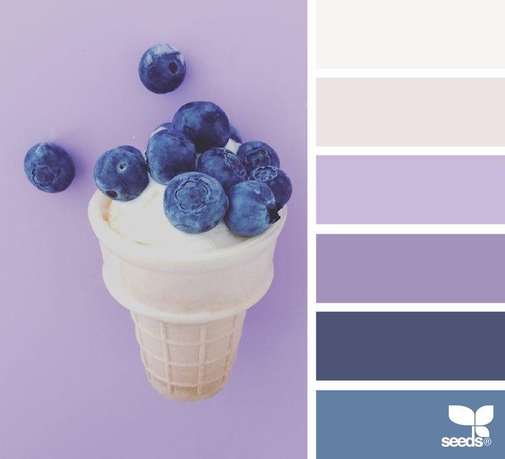 Sweet Hues via @designseeds  #seedscolor #color #colorpalette #color #palette #pallet #colour #colourpalette #design #seeds #designseeds #summer #sweet #blueberry #blueberries #blue #violet #purple #lavender #pastel #pastels #candyminimal