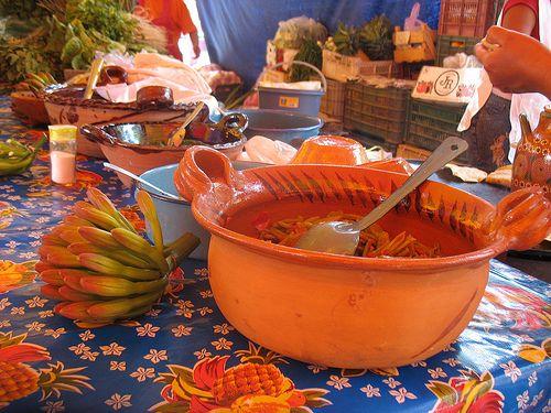 Golumbos o quiote de Maguey.Estados de queretaro e Hidalgo México