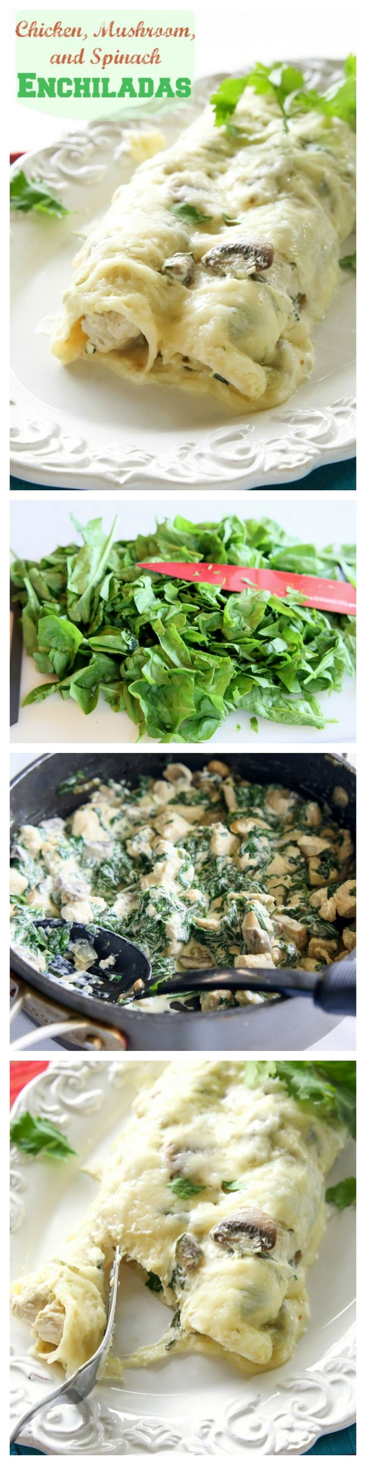 These Chicken, Spinach, and Mushroom Enchiladas are creamy enchiladas topped with a cilantro sour cream sauce. This dish is company worthy! http://the-girl-who-ate-everything.com