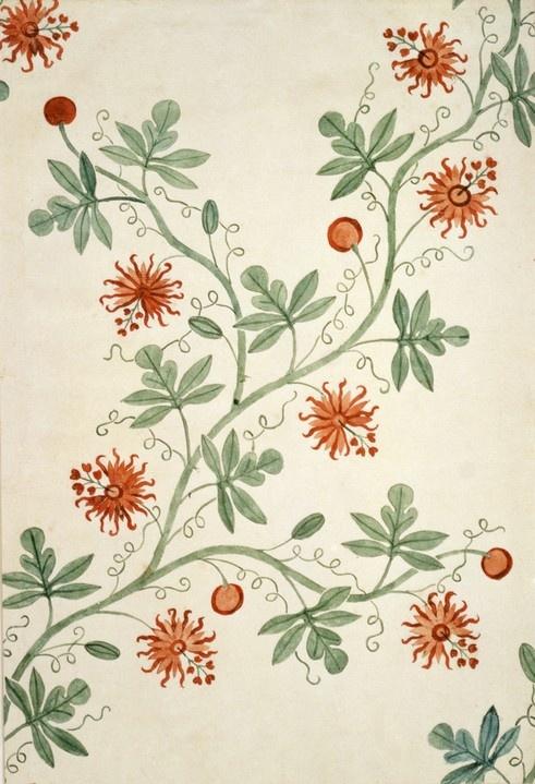 Silk design by Anna Maria Garthwaite, vers 1726-1727, Londres, Victoria and Albert Museum
