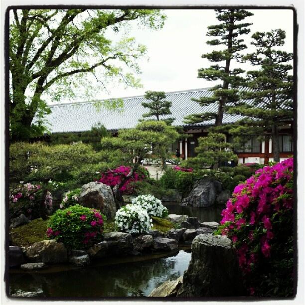 三十三間堂 · 京都  Sanjusangendo, Kyoto