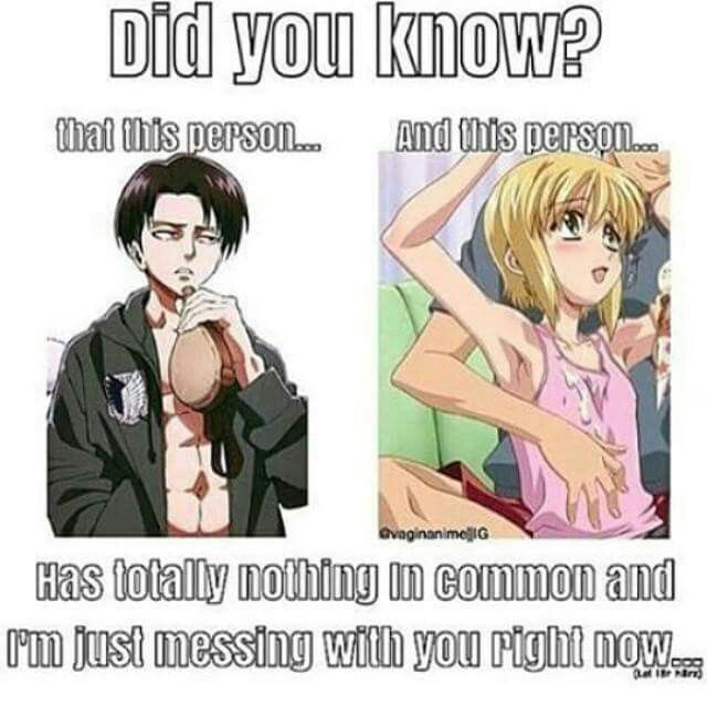 Levi and Pico | Attack on Titian and Boku no Pico | lol