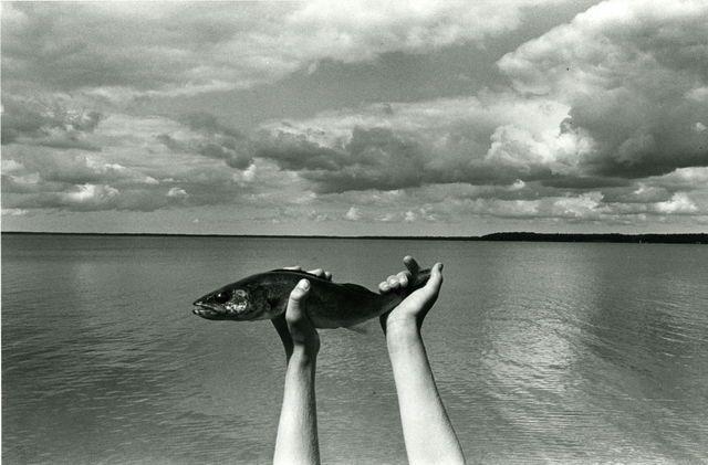 Kenneth Josephson, Michigan (1974)