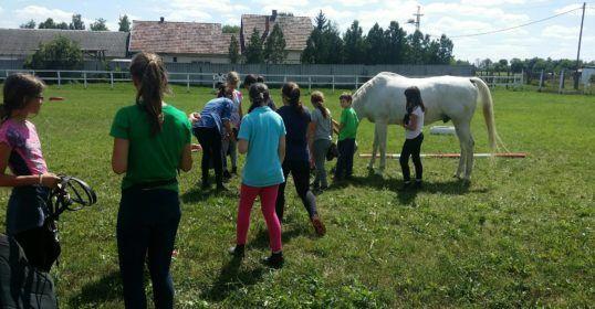 Debreceni Táborozás - Ha nyár, akkor: Irány a szabadba! Irány a LOVASTÁBOR!