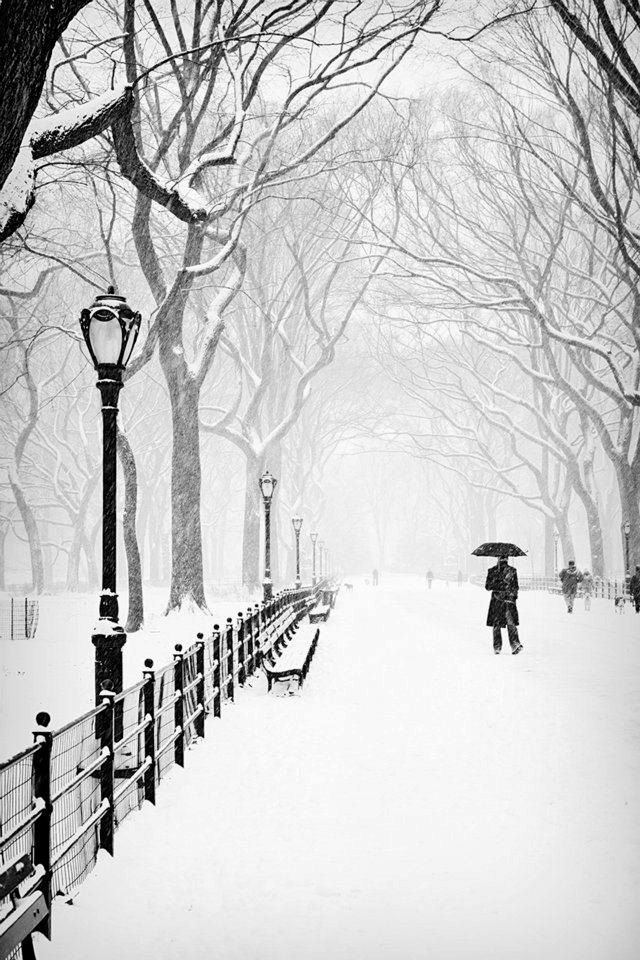 The Mall B&W Photo, Central Park, New York, City, Urban, NYC, Snow, Storm, Black, White, Winter