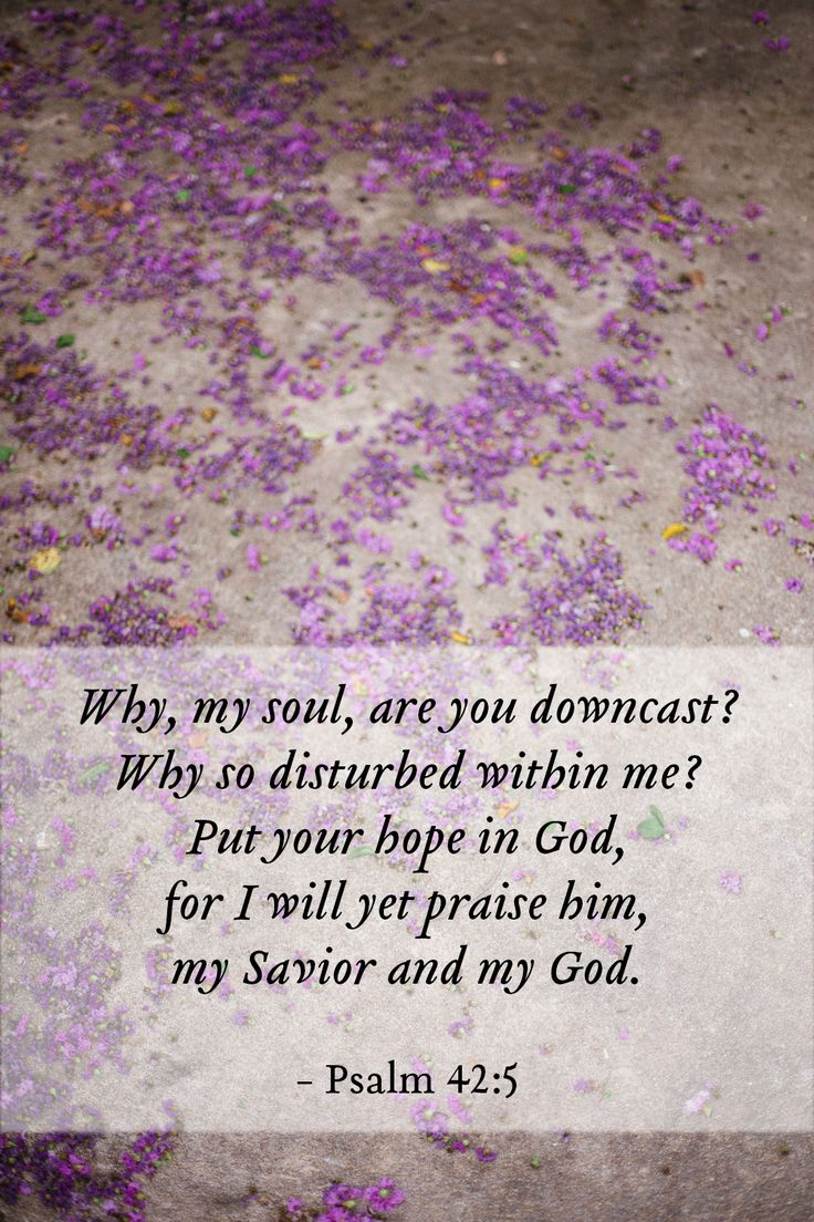 Why, my soul, are you downcast? Why so disturbed within me? Put your hope in God, for I will yet praise him, my Savior and my God. - Psalm 42:5