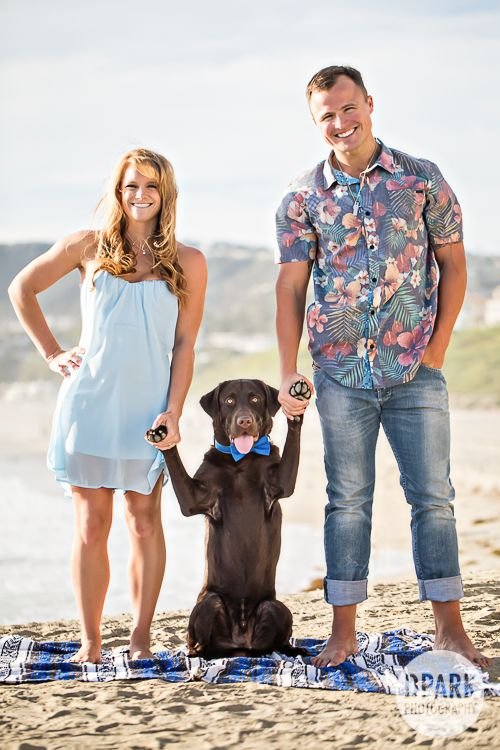 BEST couples engagement and family dog pose on the beach.  Super adorable and funny!