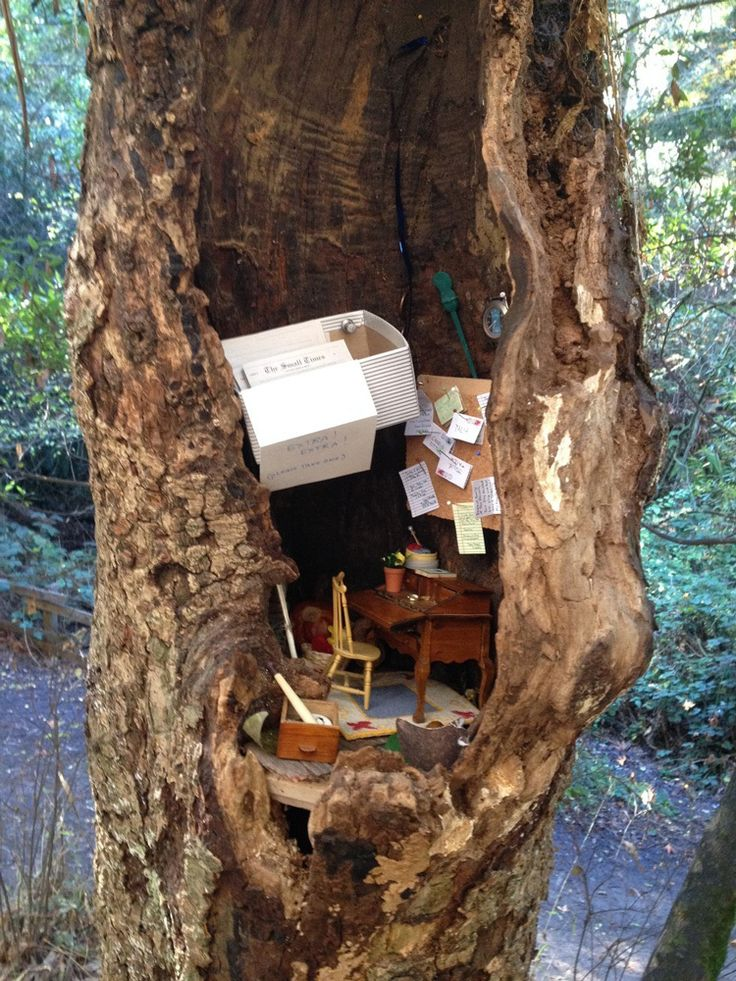 photo by mallorypickett The Fairy Post Office is an unofficial yet functioning post office located in a tree in Tilden Park in Orinda, California. The post office, complete with a tiny bulletin boa...