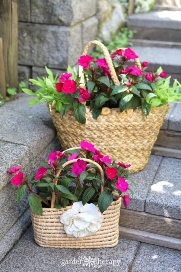 These straw purses exude summer beauty when planted with brightly-hued annuals that bloom tirelessly all season.