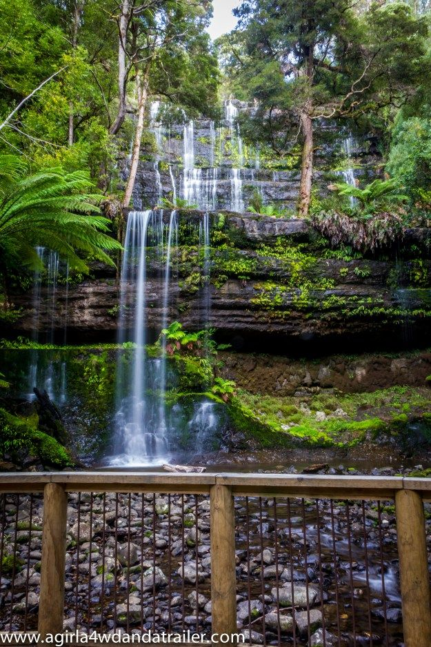 Mt Field National Park, in Tasmania's south, is known as the 'National Park of Waterfalls'. Blogger agirla4wdandatrailer @Monica Forghani Bugno shows us why! #waterfalls #mtfield #tasmania #discovertasmania I