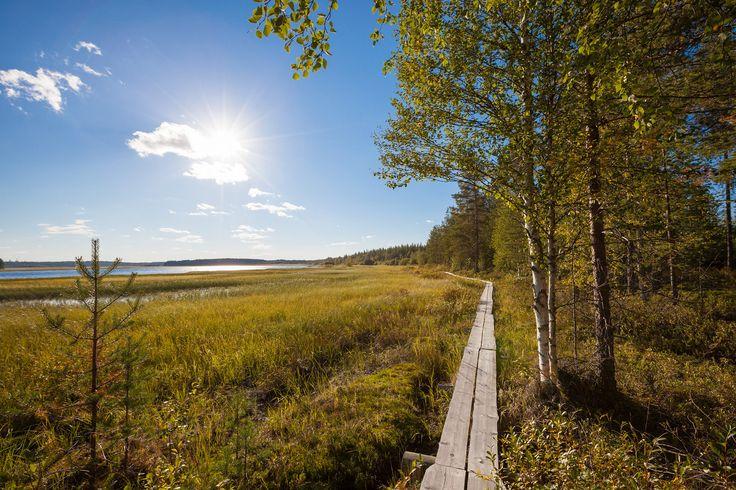https://flic.kr/p/Gmcuuo | Scenery near Juntusrannantie | Suomussalmi Finland