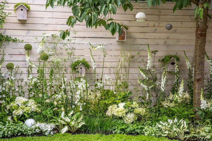 Living Landscapes: City Twitchers / RHS Gardening. Lamium maculatum 'White Nancy', Hosta 'Fire and Ice' or Eryngium giganteum, help to bring the white and green scheme together. Romantic white Roses, bring the famous Sissinghurst Gardens to mind. In the photo: tall and upright foxgloves, white heads of Hydrangea macrophylla, Campanulla persicifolia 'Alba' white bells, delicate Descampsia cespitosa grass and green balls of Allium, combined together in a stylish, texture reach border.