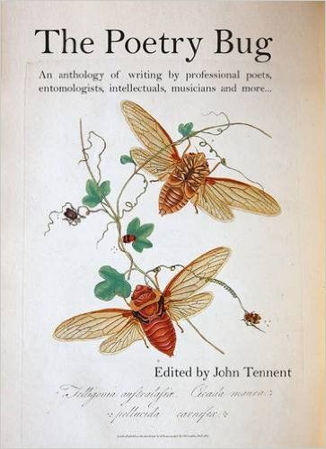 The Poetry Bug: An Anthology of Writing by Professional Poets, Entomologists, Intellectuals, Musicians and More: John Tennent: 9781910901007: Amazon.com: Books