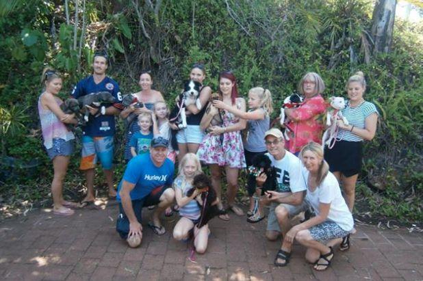 Puppy Pre-School is always fun at Tallebudgera Veterinary Clinic, Gold Coast