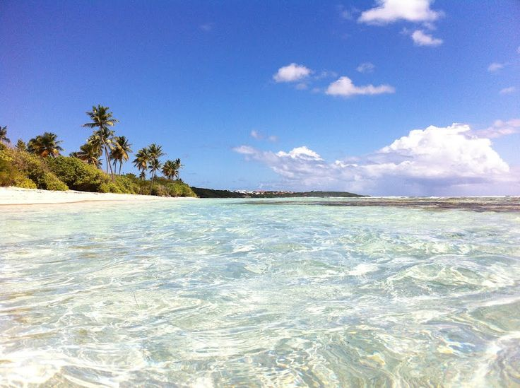 #Paradise at St Anne #Guadeloupe