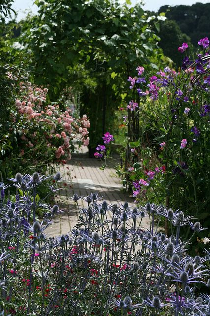 Classic planting design pinned to garden design for Garden design planting schemes